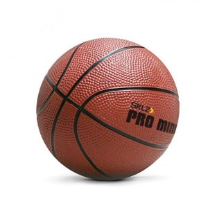 Pro Mini Hoop Ball XL